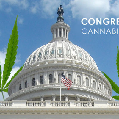 Congressional Cannabis Caucus marijuana laws marijuana knowledge