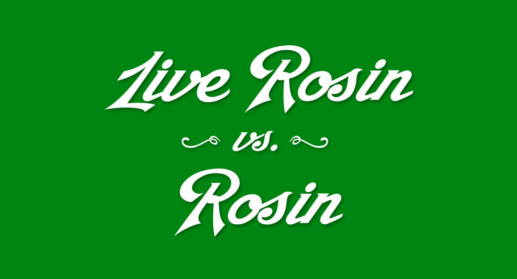 Live Rosin vs. Rosin marijuana knowledge